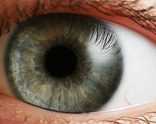 Wow, humans are incredible, especially their eyes!